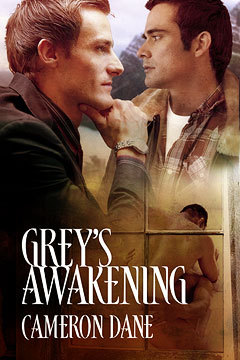 greys awakening